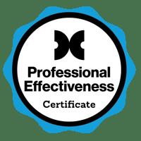 Professional Effectiveness-1